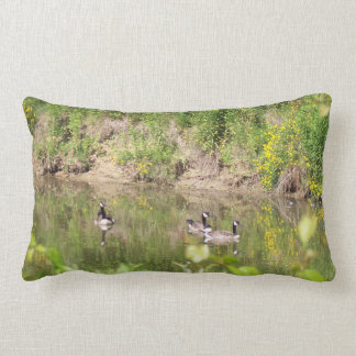 Canada Geese on Pond Pillow