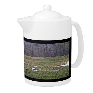 Canada Geese on the Ranch Teapot