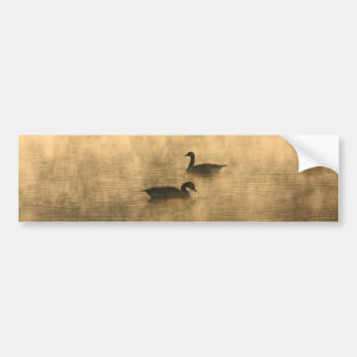 canada geese on the river by sunrise bumper stickers