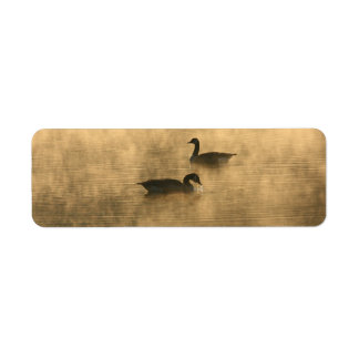 canada geese on the river by sunrise label
