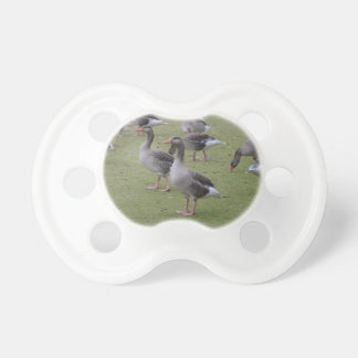 Canada Geese Pacifier