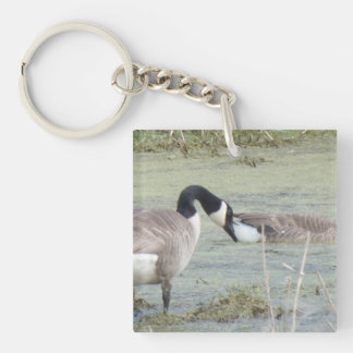 Canada Geese pair in algae covered swampy pond Double-Sided Square Acrylic Keychain
