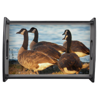 Canada Geese Photo Serving Tray