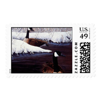 Canada geese postage stamp