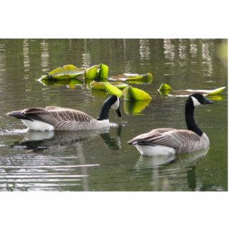Canada Geese Statuette