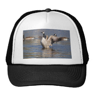 Canada Geese Trucker Hat