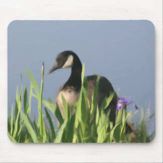 Canada Goose Animal Art Mouse Pad