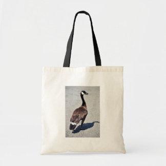 Canada goose at Goose Lake, Anchorage Bags