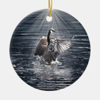 Canada Goose Bathing in a Lake Art Design Ceramic Ornament