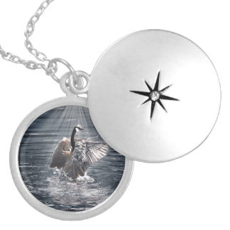 Canada Goose Bathing in a Lake Art Design Round Locket Necklace