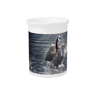 Canada Goose Bathing in a Lake Art Design Pitcher