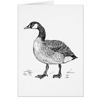 Canada Goose Bird Art Stationery Note Card