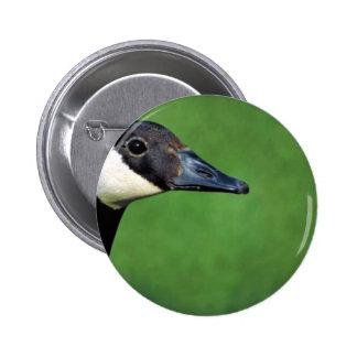 Canada goose pin