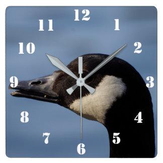 Canada Goose Clock