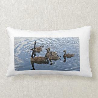 Canada Goose Family Pillow