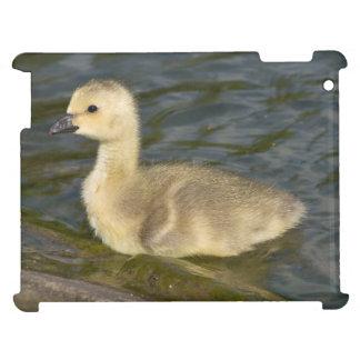 Canada Goose Gosling iPad Cover