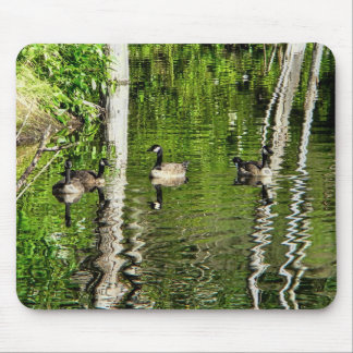 (Canada) Goose Green Mouse Pad