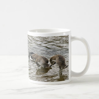 Canada Goose Haiku mug