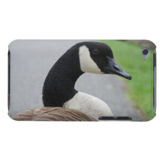 Canada Goose' cheap ipods