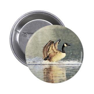 Canada Goose Landing Buttons