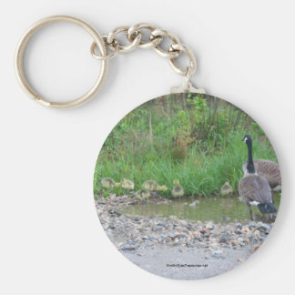 Canada Goose Mom Babies Nature Photo Keychain