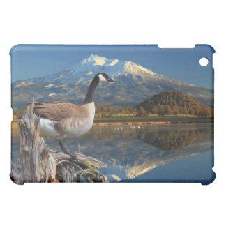 CANADA GOOSE ON THE LAKE iPad MINI CASE