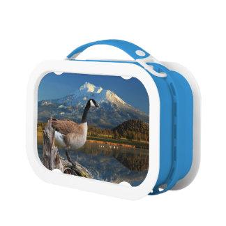CANADA GOOSE ON THE LAKE LUNCH BOX