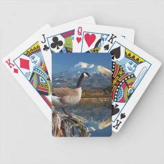 CANADA GOOSE ON THE LAKE BICYCLE CARD DECKS
