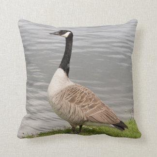Canada Goose Pillow
