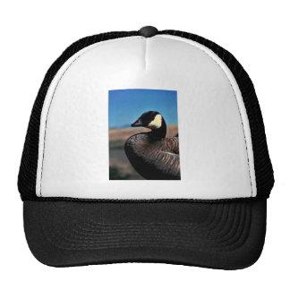 Canada goose portrait trucker hat