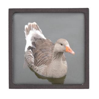 Canada Goose Premium Gift Boxes