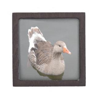 Canada Goose Premium Jewelry Boxes