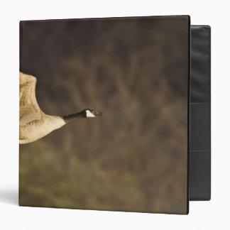 Canada Goose takes off for flight in wetlands Vinyl Binder