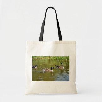 Canada goose trio on Goose Lake, Anchorage Bag
