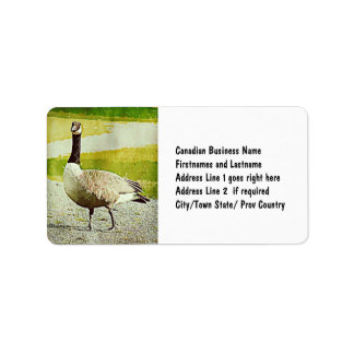 Canada Goose - Watercolor Painted Effect Label
