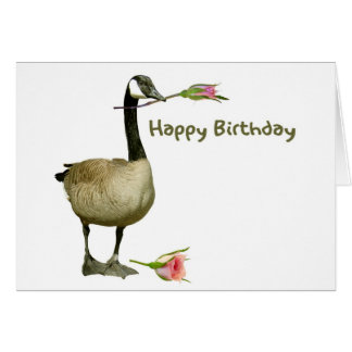 Canada Goose with Rose Birthday Card