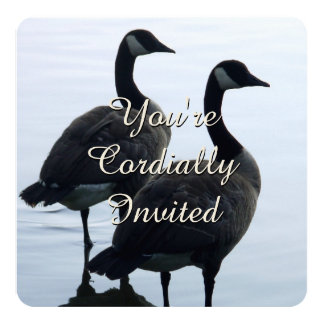"""Canada Invitations Personalized Canada Goose RSVP 5.25"""" Square Invitation Card"""