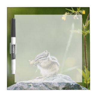 Canada, Jasper National Park, Yellow Pine Dry Erase Whiteboards