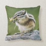 Canada, Jasper National Park, Yellow Pine Throw Pillow