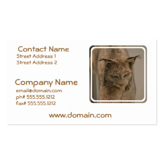 Canada Lynx Double-Sided Standard Business Cards (Pack Of 100)