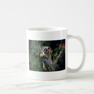 Canada Lynx-small kitten Coffee Mug