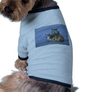 Canada lynx winter pair by icy stream dog tee shirt