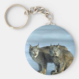 Canada lynx winter pair by icy stream keychain