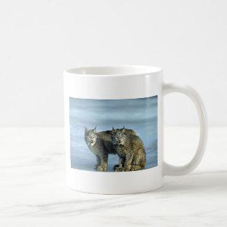 Canada lynx winter pair by icy stream coffee mugs