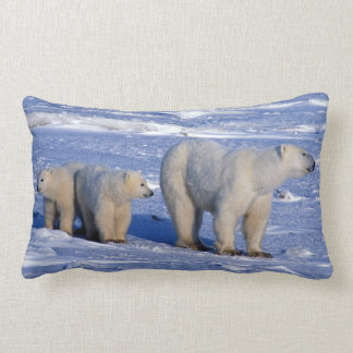 Canada, Manitoba, Churchill. Polar bear mother Lumbar Pillow