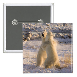 Canada, Manitoba, Hudson Bay, Churchill. 2 Pinback Buttons