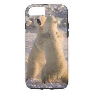Canada, Manitoba, Hudson Bay, Churchill. 2 iPhone 7 Case