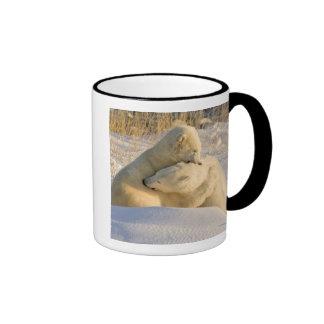 Canada, Manitoba, Hudson Bay, Churchill. 2 Mugs