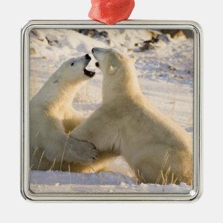 Canada, Manitoba, Hudson Bay, Churchill. 3 Metal Ornament