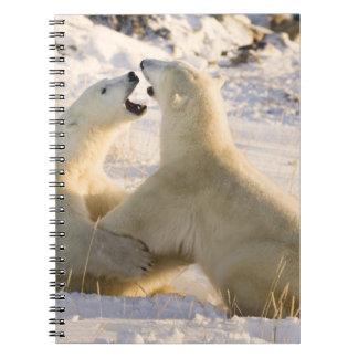 Canada, Manitoba, Hudson Bay, Churchill. 3 Note Books